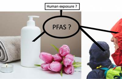 PFAS and the skin